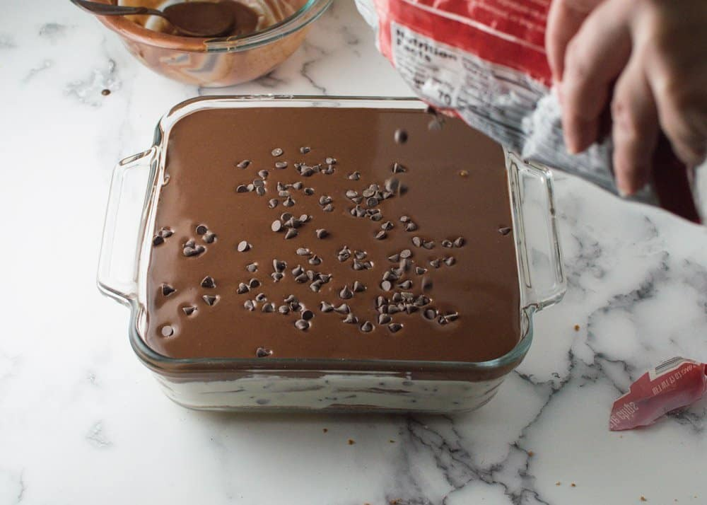 Sprinkling Chocolate Chips on top of Easy Cannoli Cake
