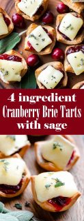 collage of cranberry brie tarts with text in the middle