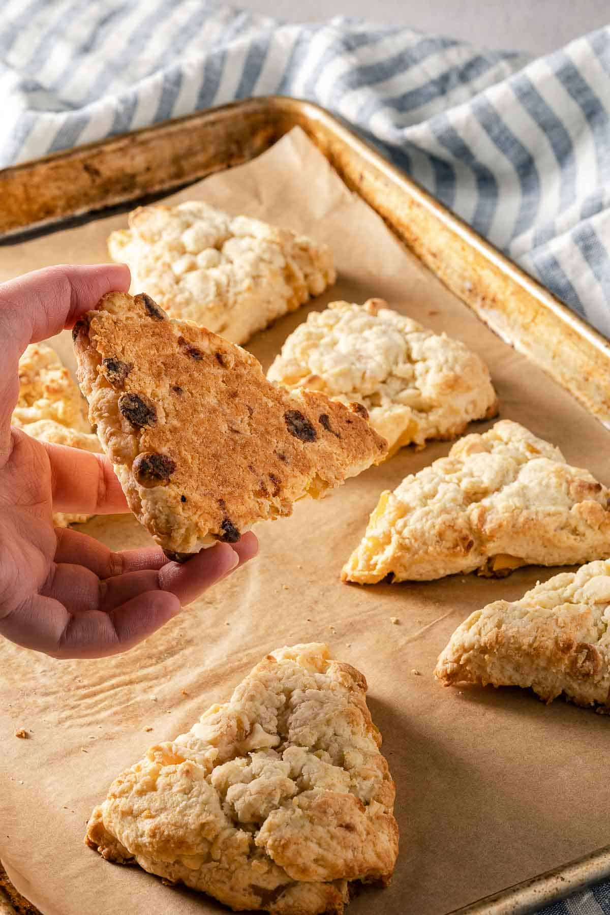 baked scone on baking sheet with hand holding scone to show bottom
