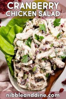 cranberry chicken salad on platter with text label at top
